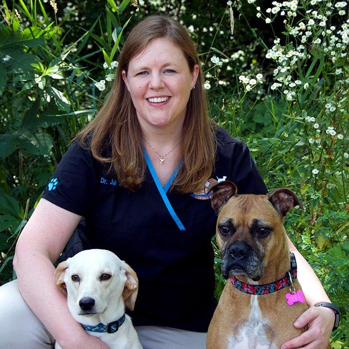 Julie Schodron<BR>DVM photo